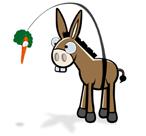donkey_il